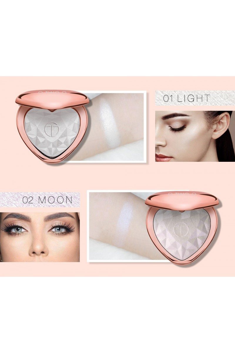 Highlighter Professionnel